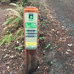 Amazing signage. The best trail markers that I've seen. Credit: Miranda Leitsinger